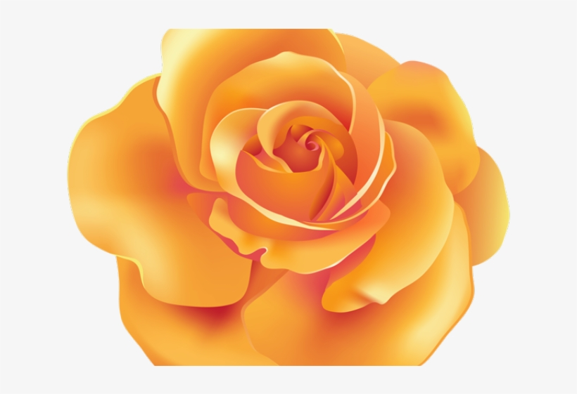 Spain Clipart Beauty And The Beast Rose - Orange Rose Clipart Png, transparent png #9692856