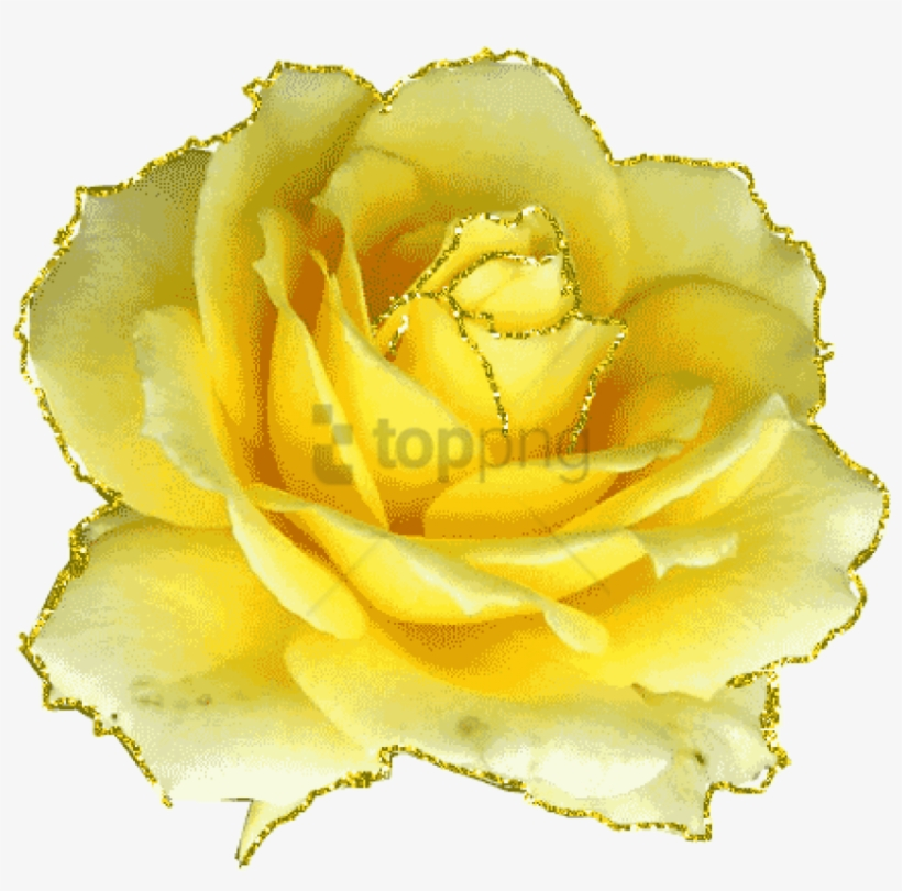 Free Png Download Gifs Et Tubes Fleurs Animated Gif Yellow Roses
