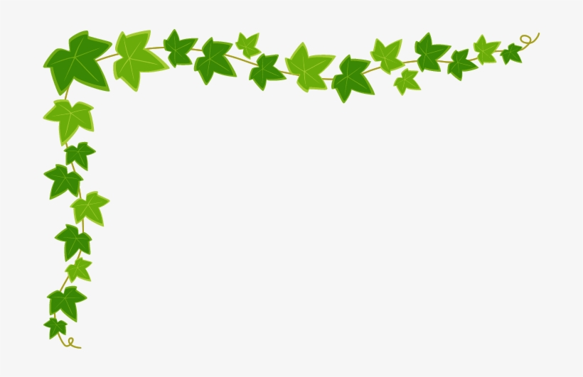 季節の花 5月 イラスト 無料 Bing つた イラスト Free Transparent Png Download Pngkey