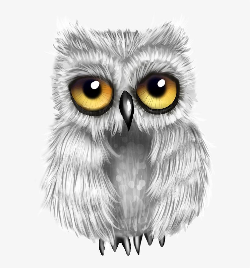 Image Du Blog Zezete2 - Owl, transparent png #976260