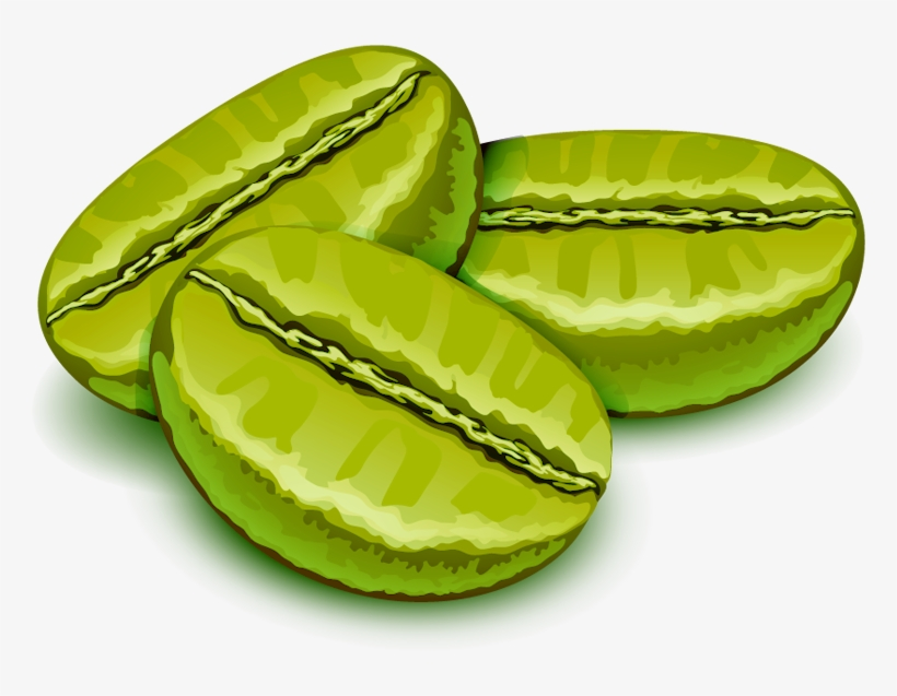 green coffee beans are soaked in hot water to open coffee free transparent png download pngkey green coffee beans are soaked in hot