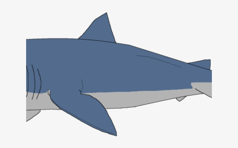 Great White Shark Clipart Sharks And Minnow - Shark Clipart, transparent png #9791223
