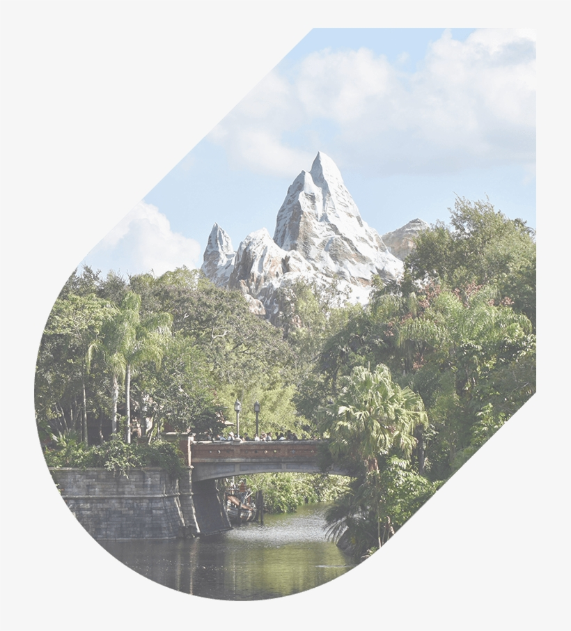 407 274 9782 Our Agents Are Available 24/7 - Disney's Animal Kingdom, transparent png #9801813