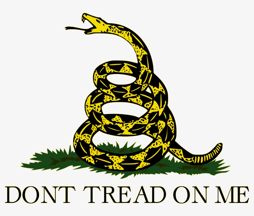 Picture1 - Don T Tread On Me, transparent png #9838094