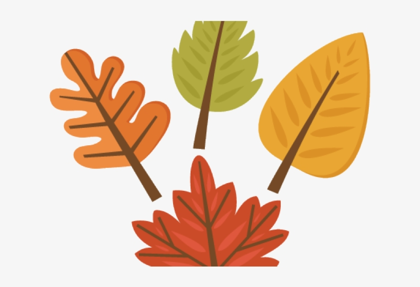 Fall Clipart Leaf Cute Fall Leaf Clipart Free Transparent Png Download Pngkey
