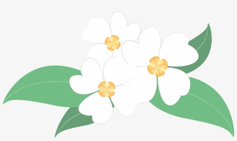 White Flower Clipart Bunga Gambar Bunga Melati Vektor Free