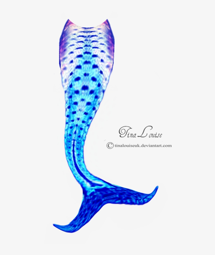 Mermaid Tail Clipart Transparent Background - Mermaid Tails Clip Art, transparent png #992944