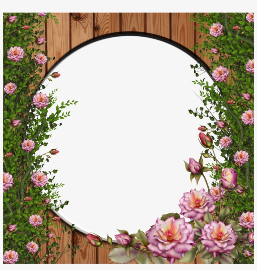 Png Rose By Collect - Rose Flower Frames Png, transparent png #995280