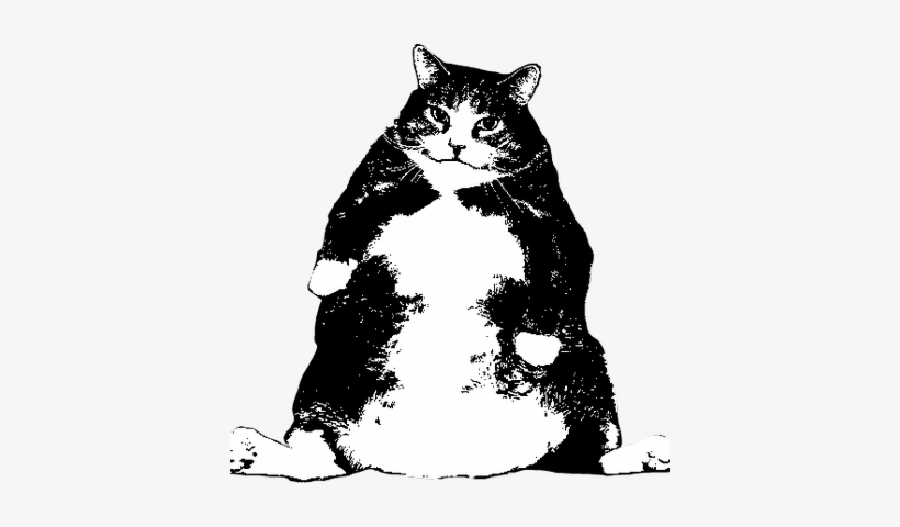 Fat Cat Woodworks - Domestic Short-haired Cat, transparent png #998174