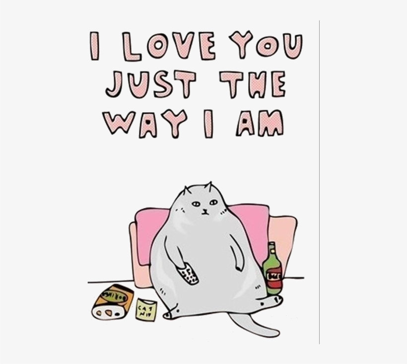 My Edit Cats Transparent Fat Cat Source Needed - Love You Just The Way I Am, transparent png #998199