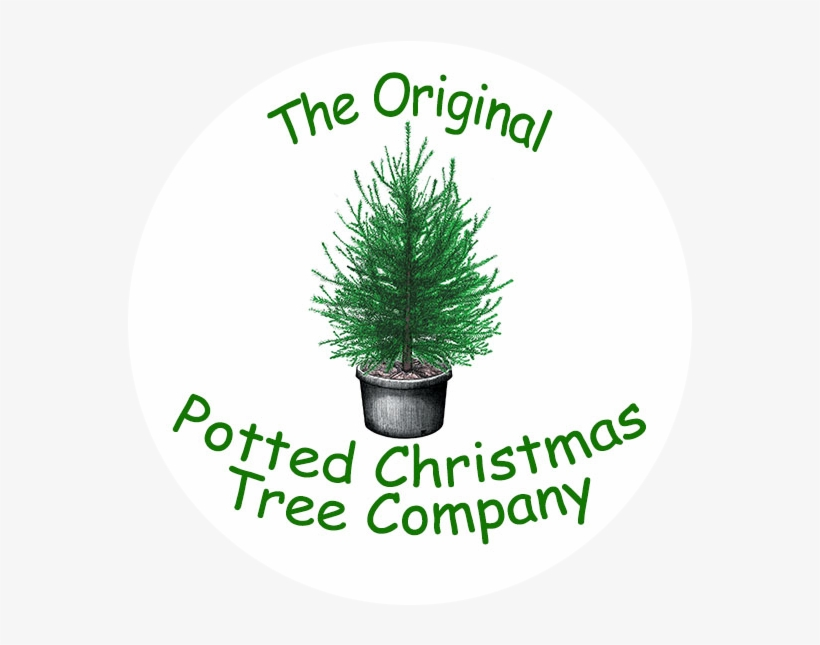 """The Original Potted Christmas Tree Company - Paws4critters We Woof You A Square Sticker 3"""" X 3"""", transparent png #999092"""
