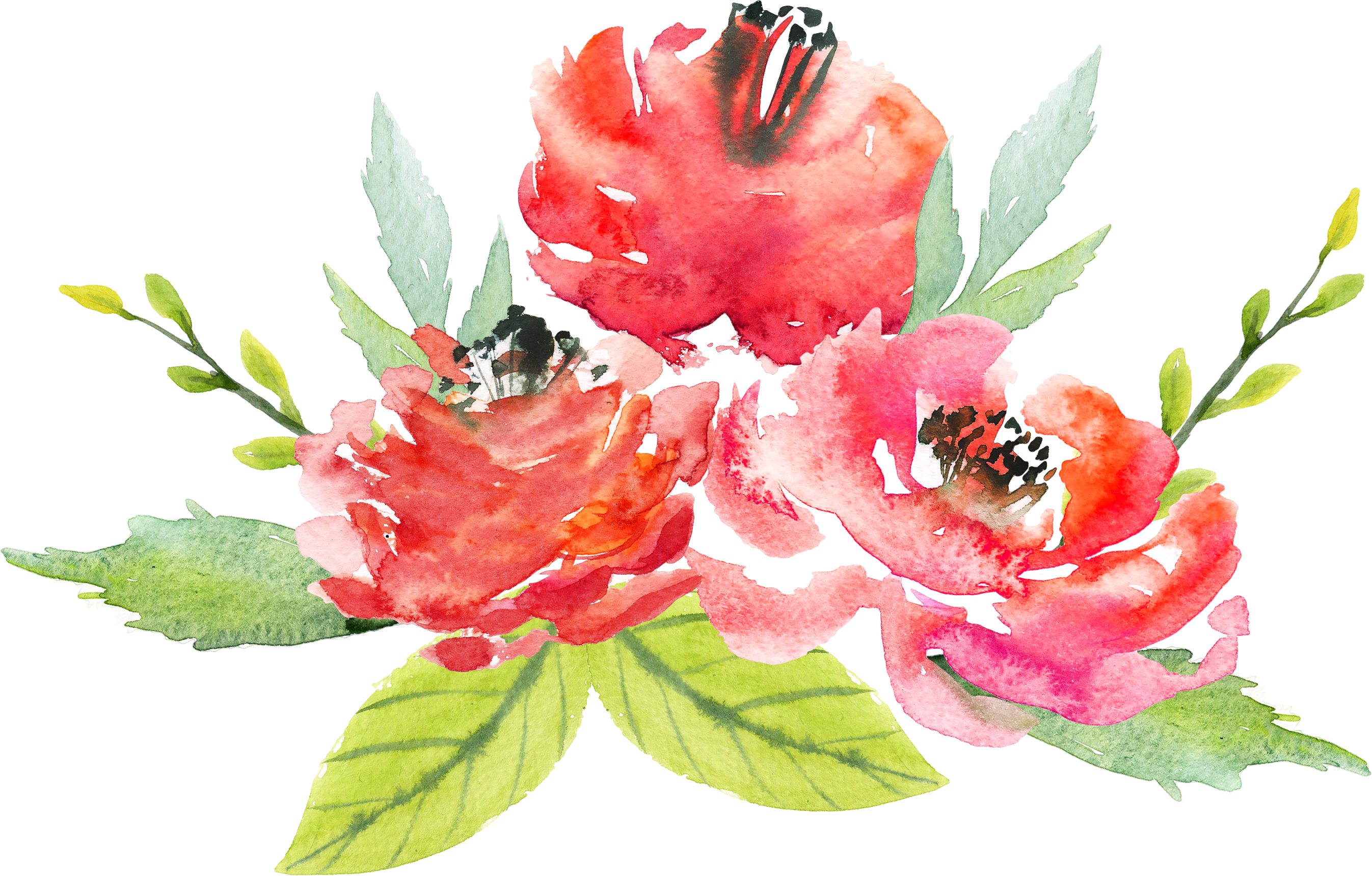 Download Watercolor Floral Bouquet Png Watercolor Red Flowers