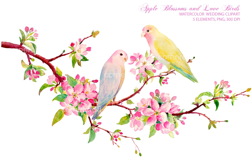 Love Birds Png Download Image - Spring Flowers Watercolor Clipart (866x577), Png Download