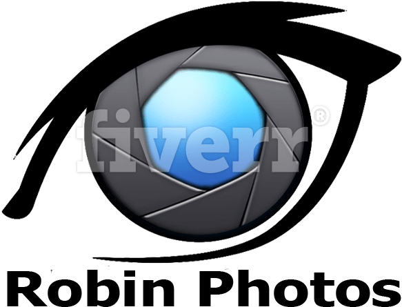 Download Design A Professional Any Type Automotive Logo For Picsart Photo Studio Png Image With No Background Pngkey Com