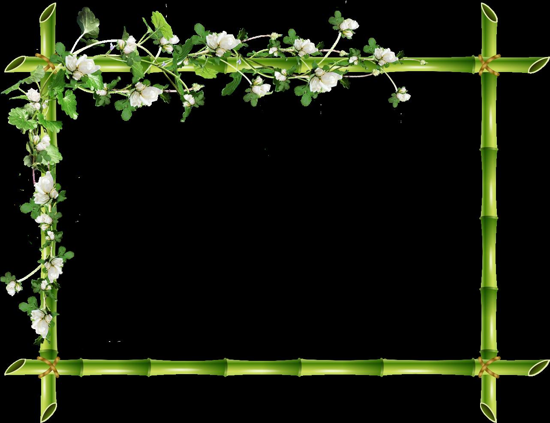 климат резкие растительной для рамки картинки цветотипа осень нуждаются