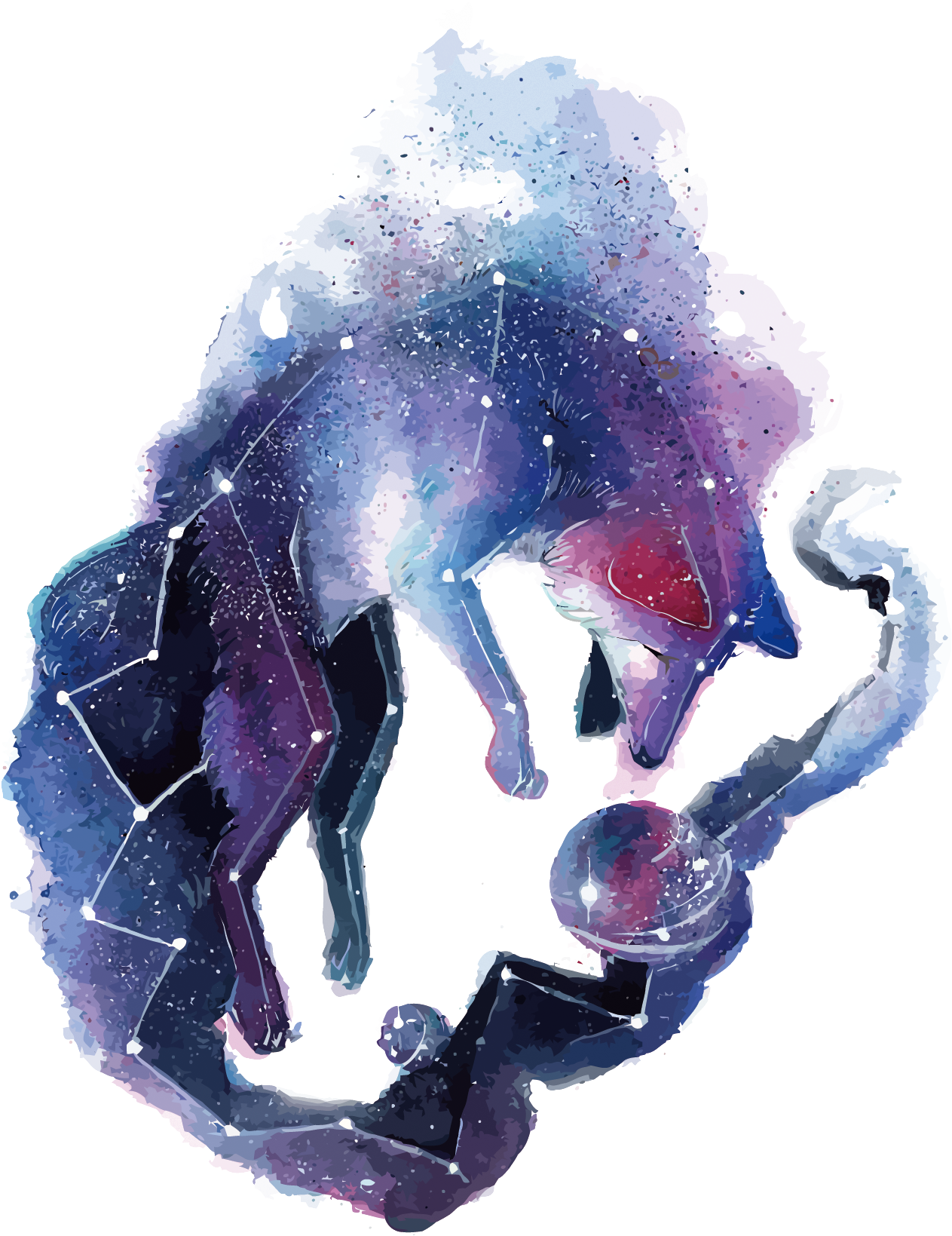 Download Arctic Fox Red Fox Gray Wolf Deer - Galaxy Fox PNG Image with No  Background - PNGkey.com