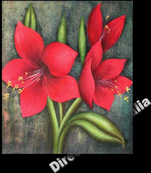 Download Png Freeuse Download Amaryllis Drawing Red Flower Kolay