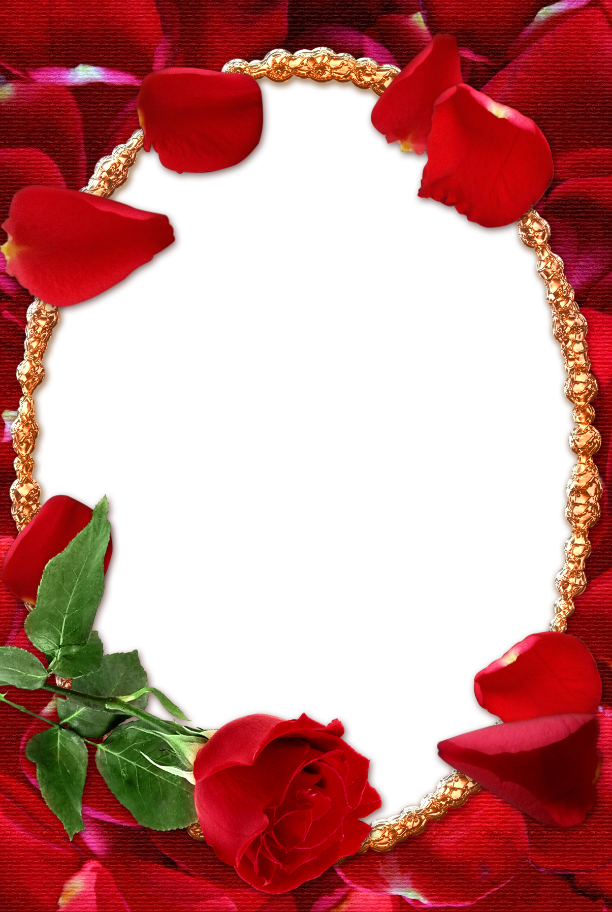 Download Rose Photo Frame Png Png Image With No Background Pngkey Com