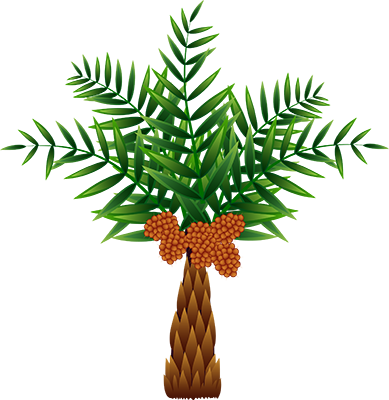 The Oil Palm, Which Was Originally Native To Africa, - Palm Oil Tree Clip Art (389x400), Png Download