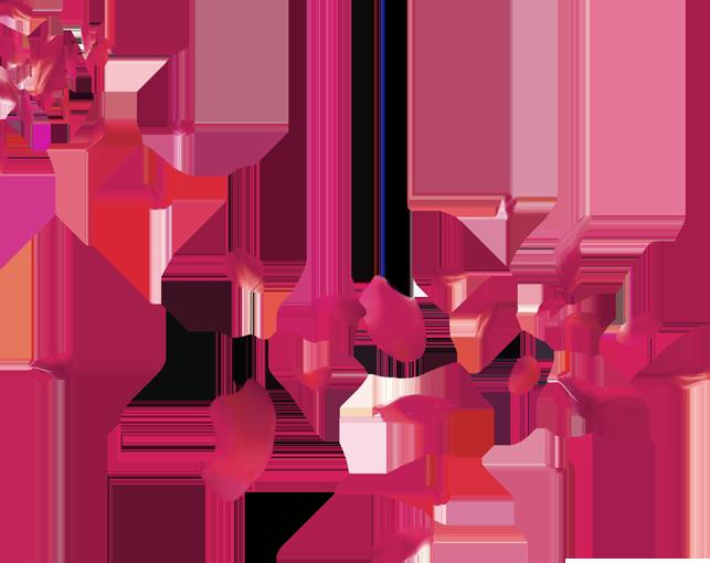 Download Petal Flower Beach Transprent - Rose Petals ...