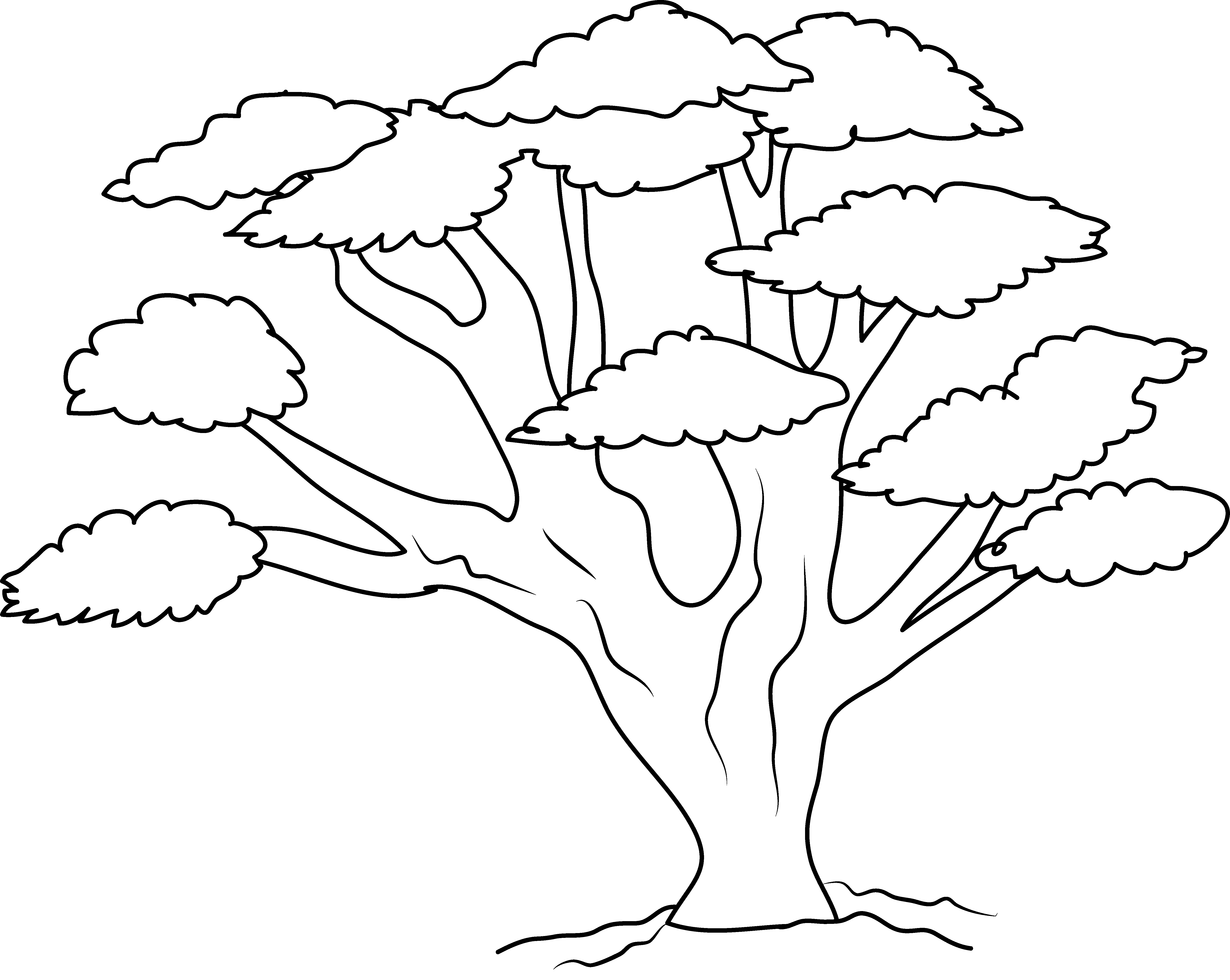 Download Oak Tree Branch Drawing At Getdrawings Clip Art Png Image With No Background Pngkey Com