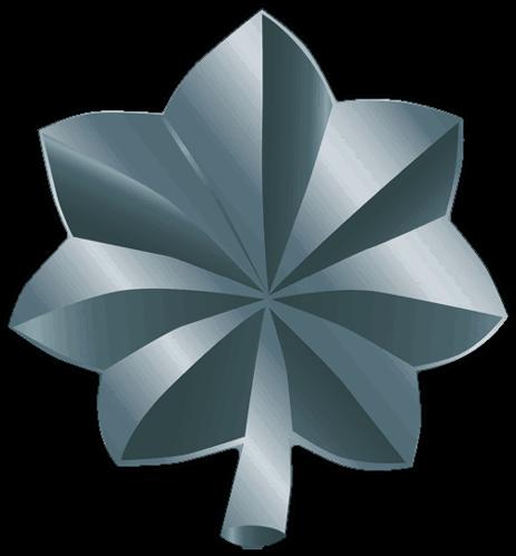 Download Military Clipart Lieutenant - Lieutenant Colonel
