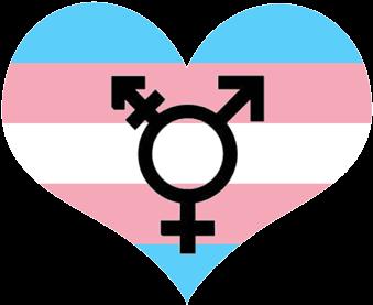 Bildresultat för transgender png
