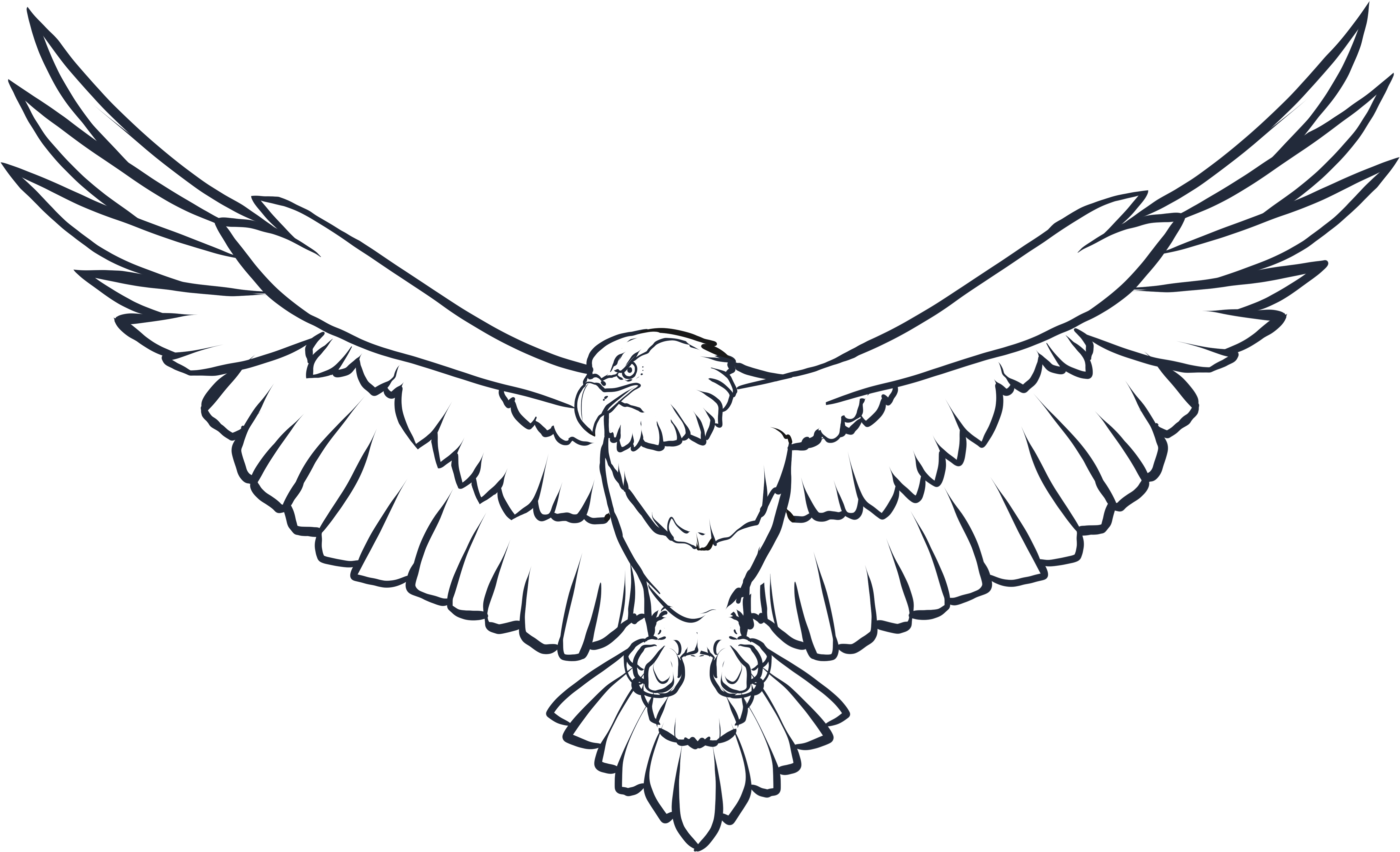 Download Eagle Wings Png Photo Eagle Black And White Png Image With No Background Pngkey Com