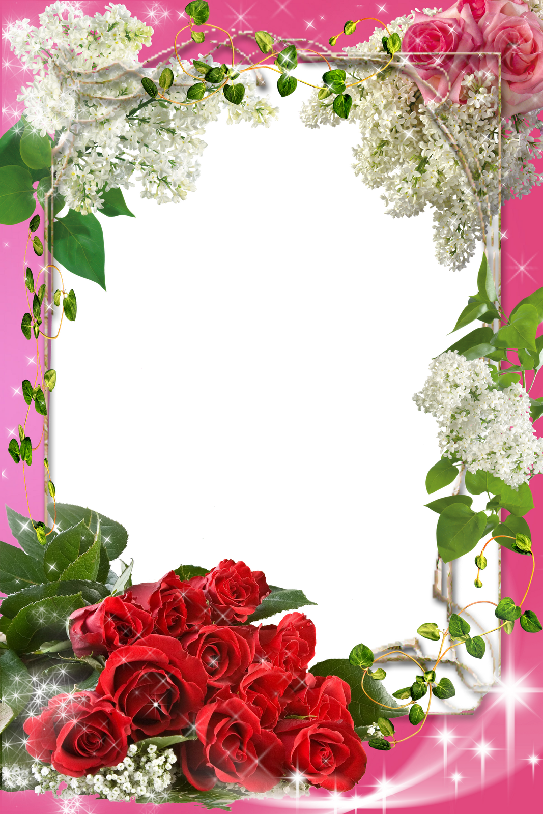 Смешные картинки, фотошоп открытки с розами