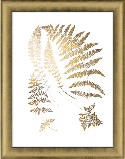 Gold Foil Ferns Ii Ashton