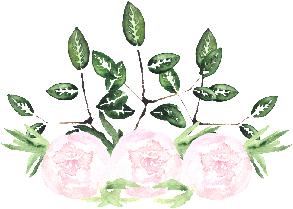 This Graphics Is White Noble Flower Transparent Decorative - Watercolor Painting (1024x835), Png Download