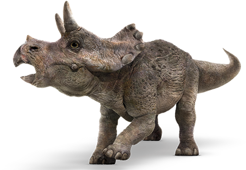 Triceratops - Jurassic World Fallen Kingdom Baby Triceratops (800x339), Png Download