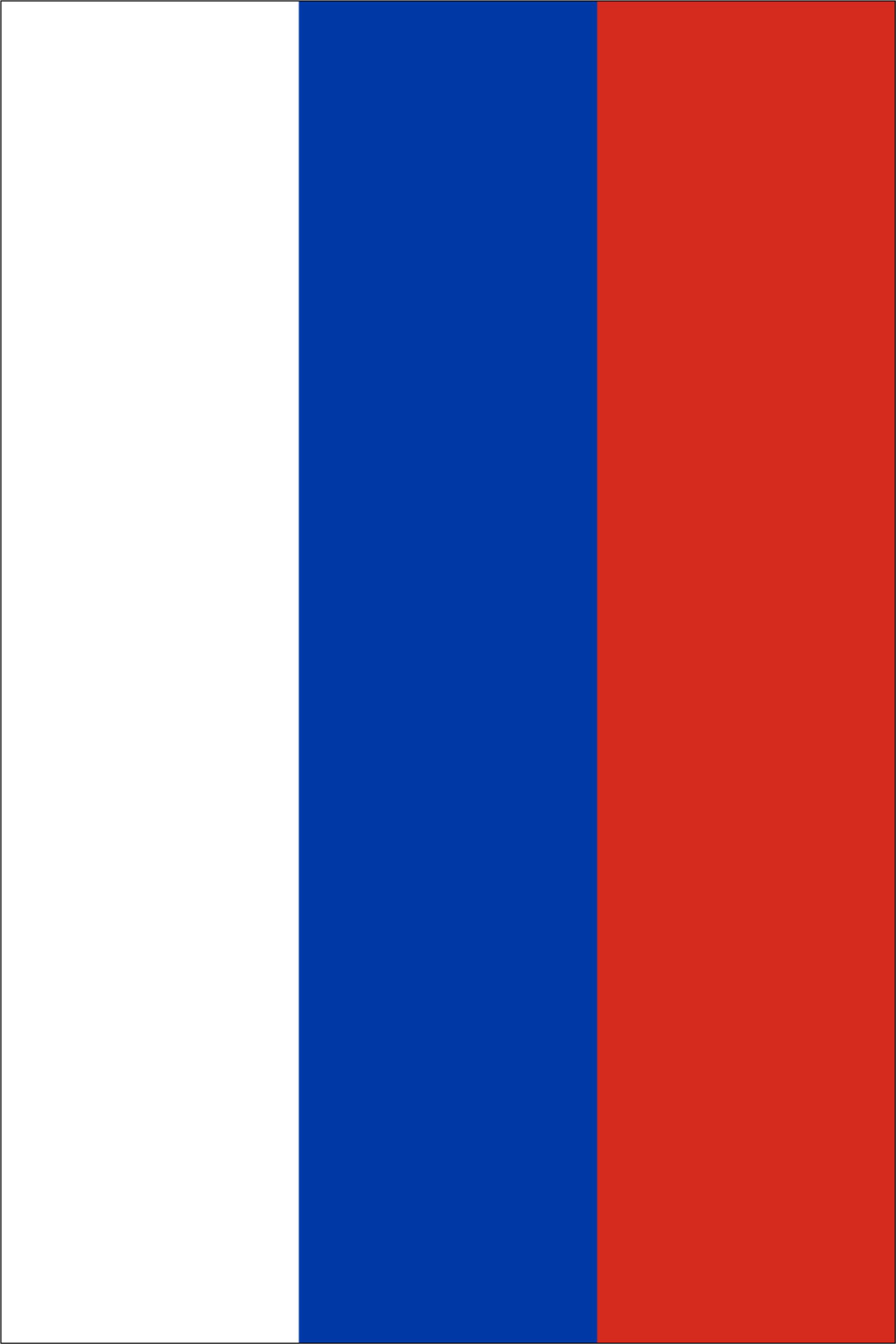 Download Printable Russia Flag Template Main Image Coquelicot Png
