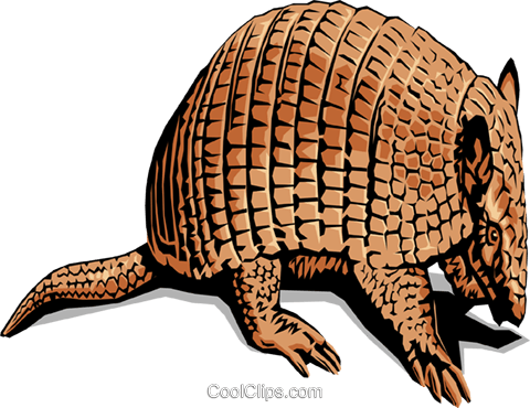 Armadillos Royalty Free Vector Clip Art Illustration - Typical Animal Of Mexico (480x370), Png Download