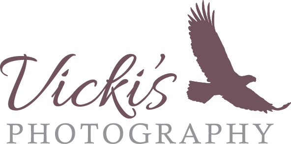 Download Vicki S Photography Calgary Vicky Photography Logo Png Png Image With No Background Pngkey Com