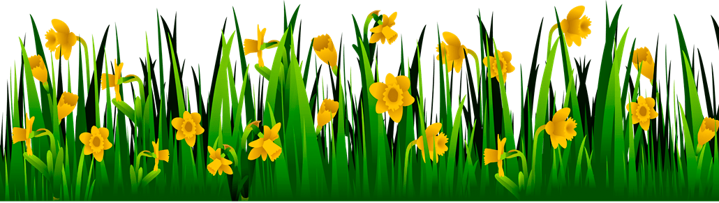 Download All Editing Grass Png Zip File, Photoshop All Editing
