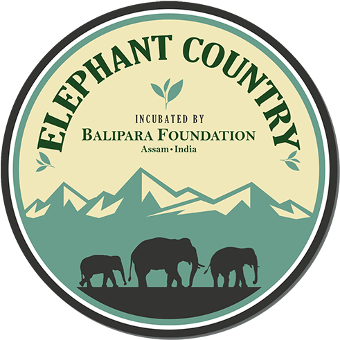 Download Asian Elephant Secretariat Kerala Png Image With No Background Pngkey Com Elephant, hd, the big picture png. pngkey