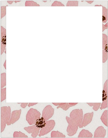 Source - - Polaroid Frame Transparent (500x530), Png Download