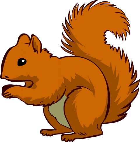 Clipart Squirrel - Squirrel Clipart Png (480x487), Png Download