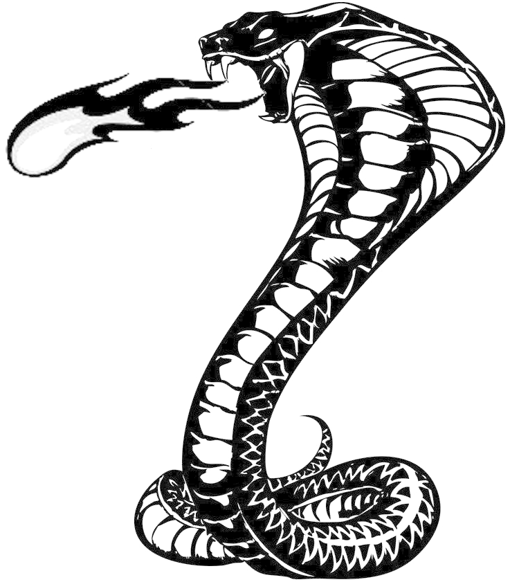 Крутые рисунки змея