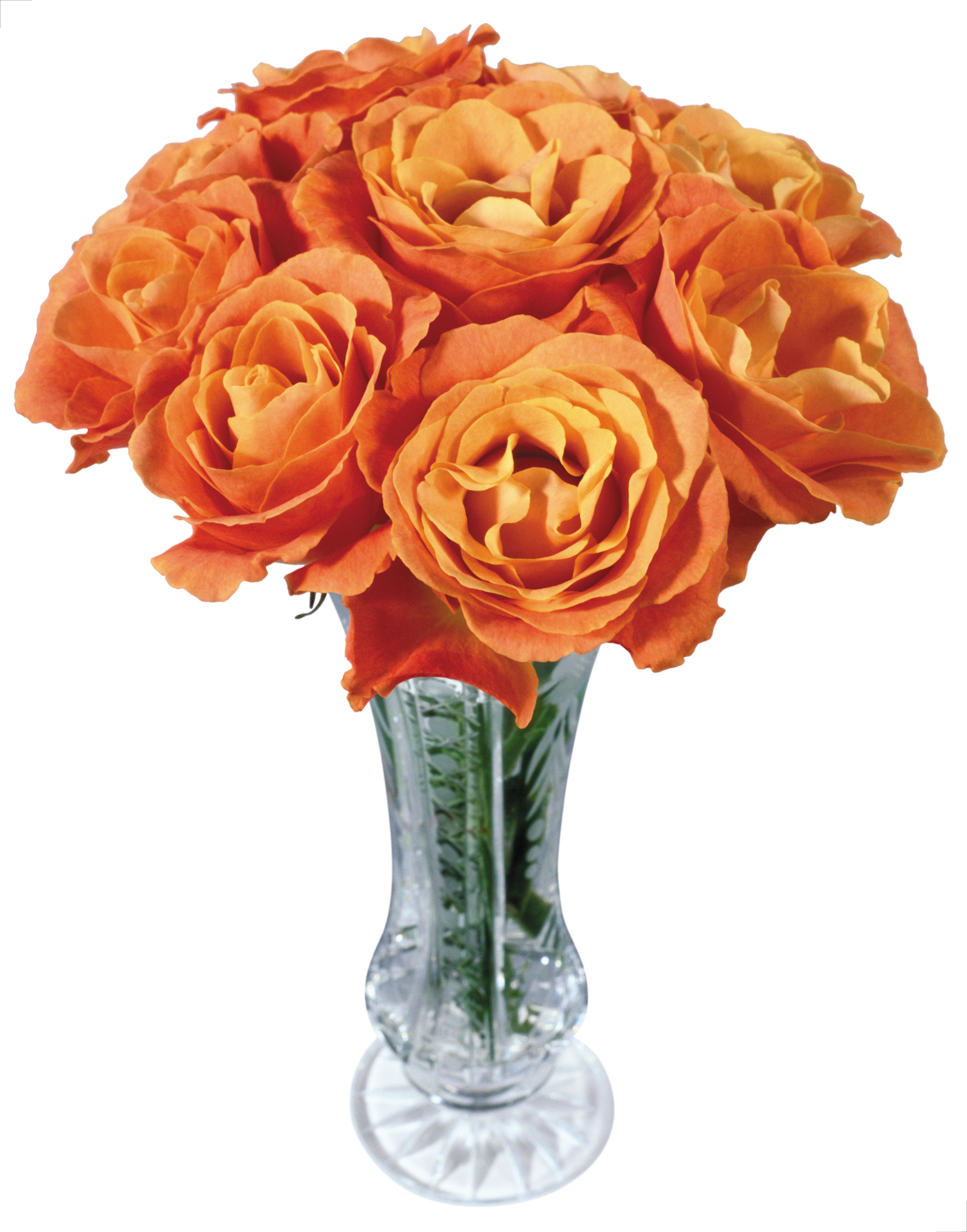 Vase Png - Orange Roses Flower Png (3703x4718), Png Download