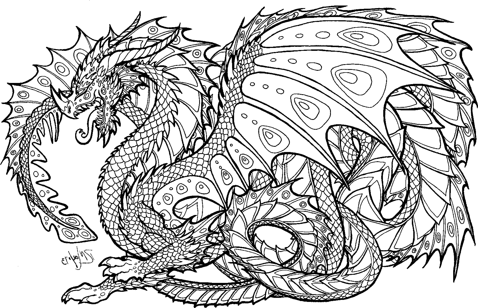 Download Realistic Dragon Coloring Pages For Adults Adult Colouring Pages Dragon Png Image With No Background Pngkey Com