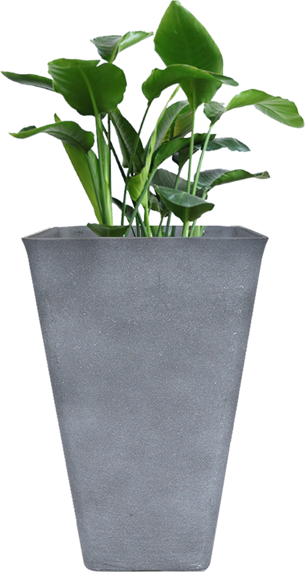Download Tall Planter 26 Inch Large Rectangular Resin Clay Flower Outdoor Planters Png Image With No Background Pngkey Com