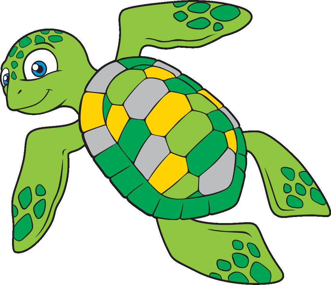Черепаха картинки нарисованные