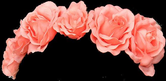 Flower Crown Transparent Tumblr Flower Transparent - Flower Crown Pink Png (575x273), Png Download
