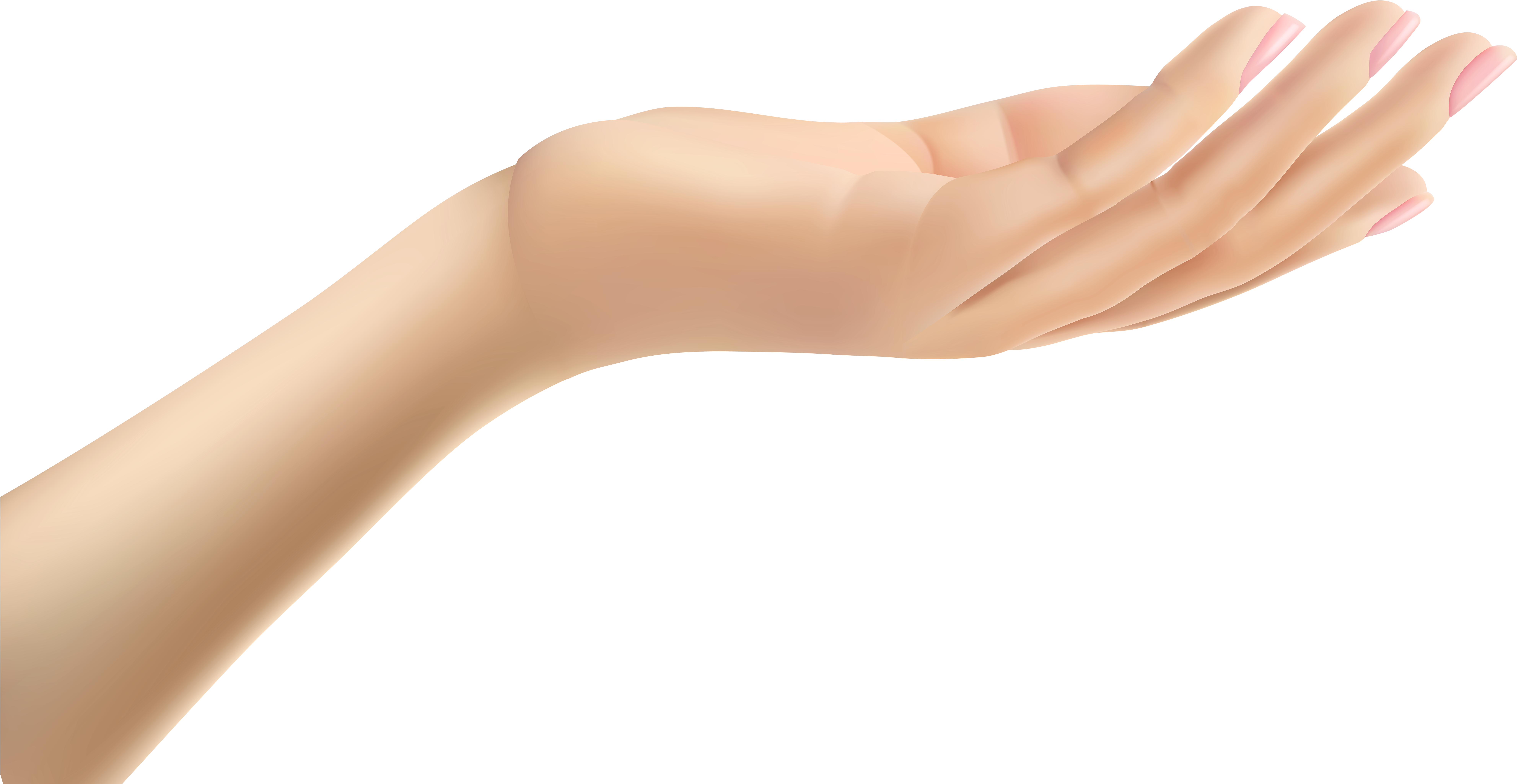 Download Transparent Hand Png Png Image With No Background Pngkey Com Download free hands png images. pngkey
