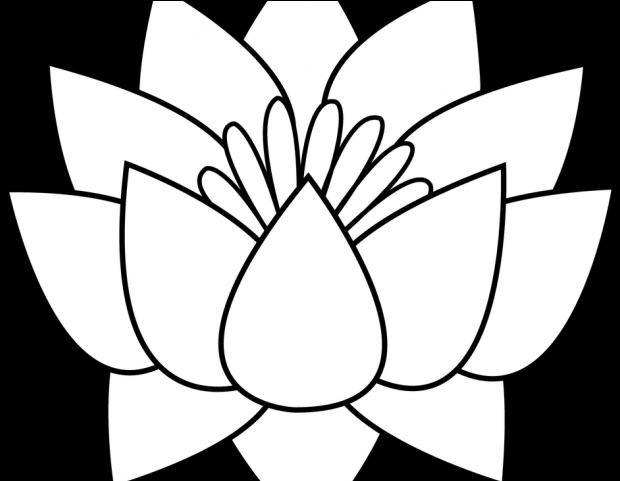 Download Lotus Tattoos Clipart Flower Border Lotus Flowers Clipart