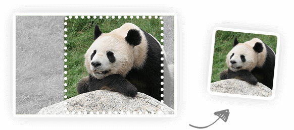 Smart Image Resize Api - Tiny Jpg (582x258), Png Download