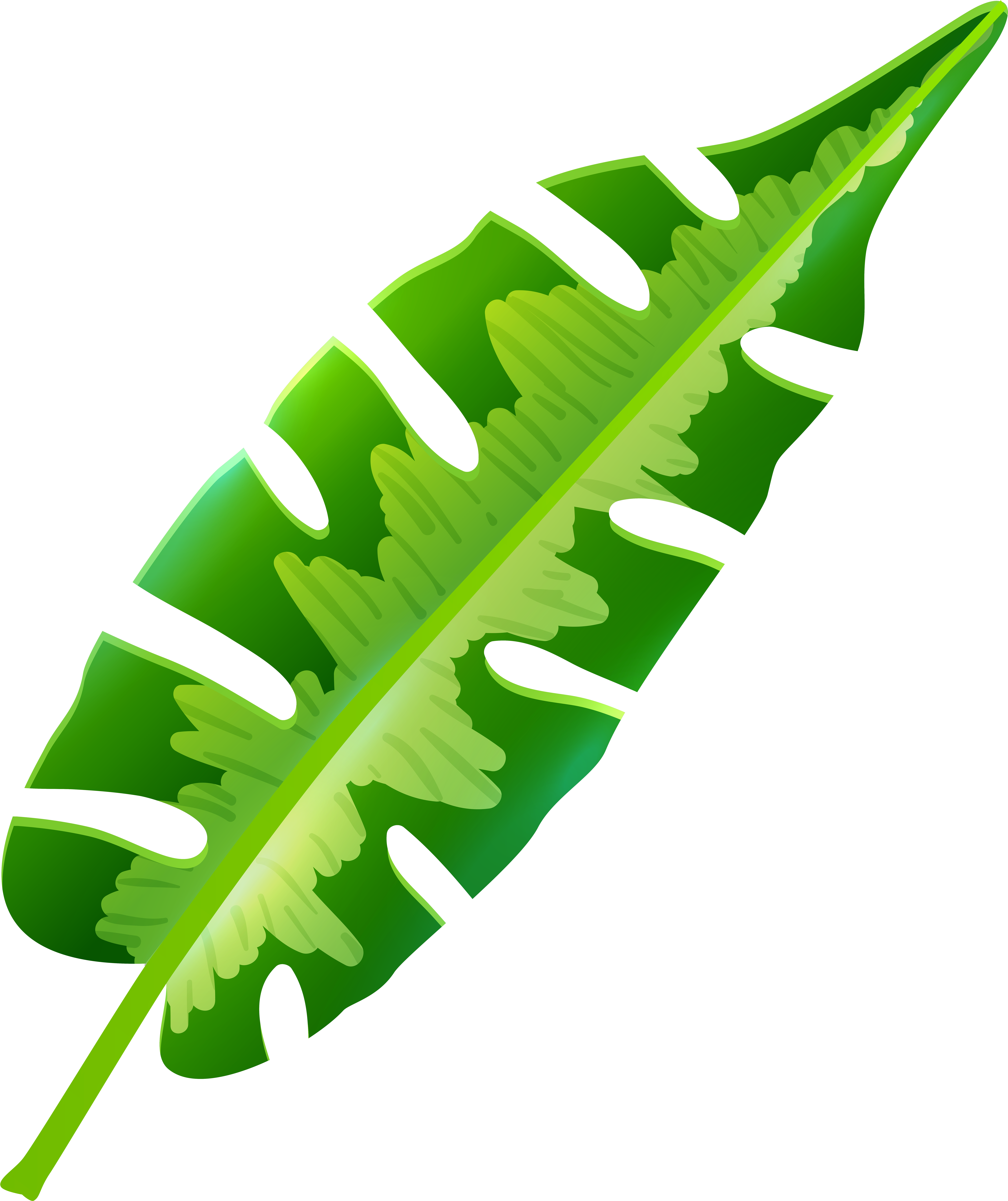 Download Tropical Leaf Png Clip Art Png Image With No Background Pngkey Com 244 transparent png illustrations and cipart matching tropical leaf. pngkey