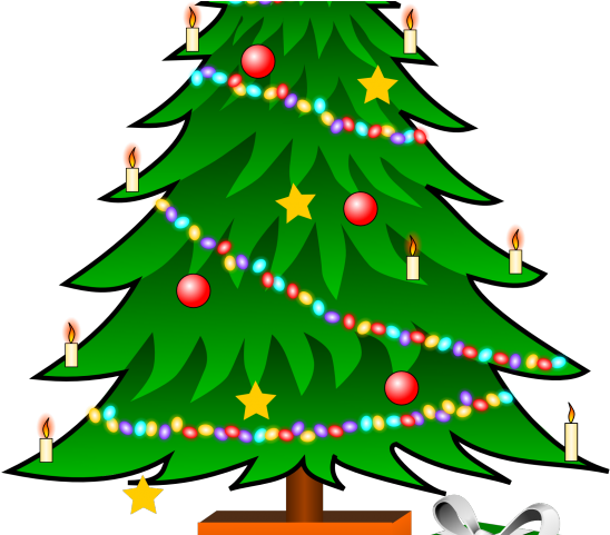 Download Cartoon Christmas Tree Christmas Tree Clipart Transparent Background Png Image With No Background Pngkey Com Available in many file formats including max, obj, fbx, 3ds, stl, c4d, blend, ma, mb. christmas tree clipart transparent